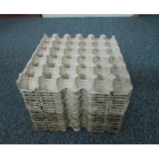 hình 1 khay giấy vỉ giấy đựng trứng để nuôi dế dụng cụ nuôi dế